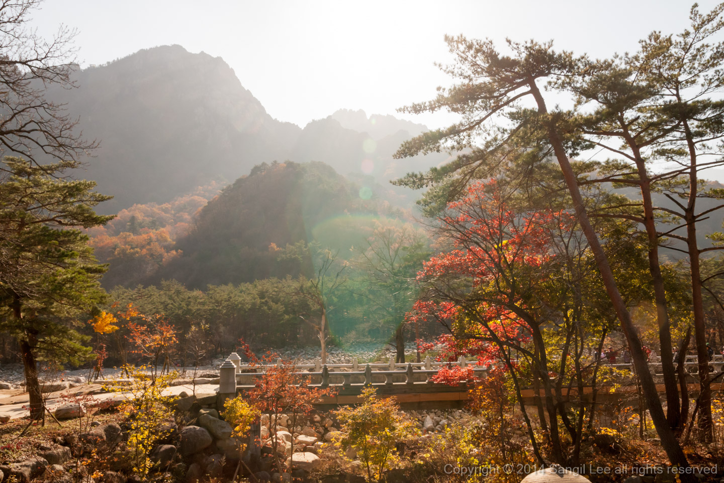 Autumnal tints of Seoraksan